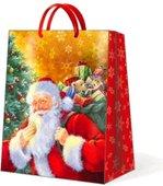 """Пакет подарочный """"Улыбающийся Санта"""", 20x25x10см Paw AGB012503"""