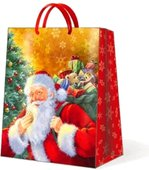 Пакет подарочный бумажный Paw Улыбающийся Санта, 20x25x10см AGB012503