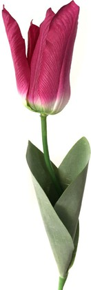Цветок искусственный Atelier de Fleur Тюльпан Фаворит красный 58см WAF1269-TA