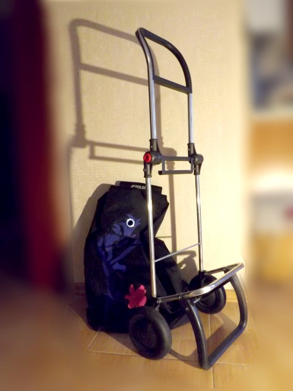 Быстросъёмная сумка и рама с шасси сумки-тележки LOGIC RG PAC067azul от Rolser