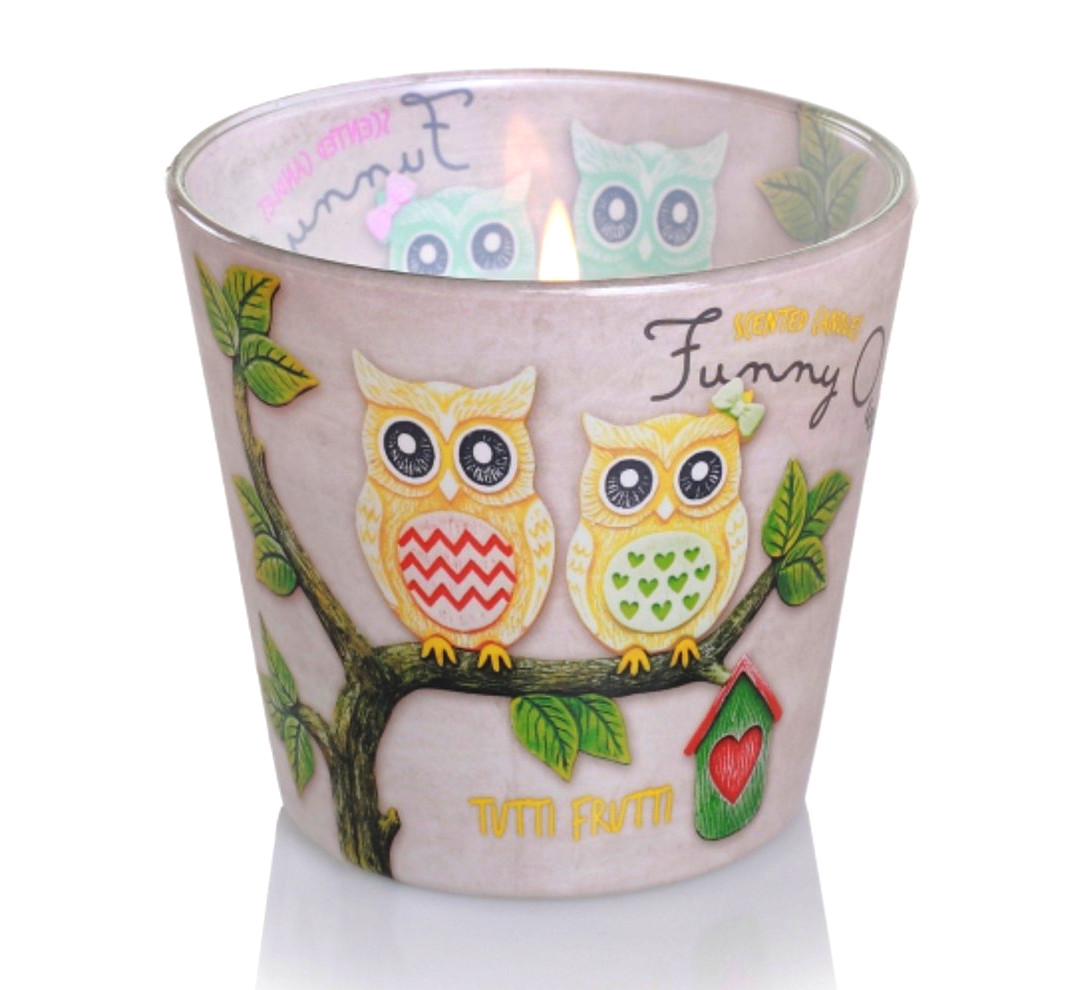 Свеча в стакане Смешные совы от Bartek Candles